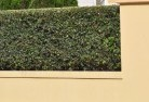 Albanvale Decorative fencing 30